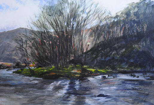 Light through trees at Aberglaslyn. by Harry Robertson
