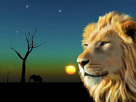 Lion Blue Sunset by Michael Greenaway