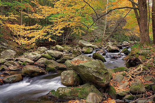 Little River I by Charles Warren