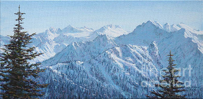 Lodge View from Hurricane Ridge by LeRoy Jesfield