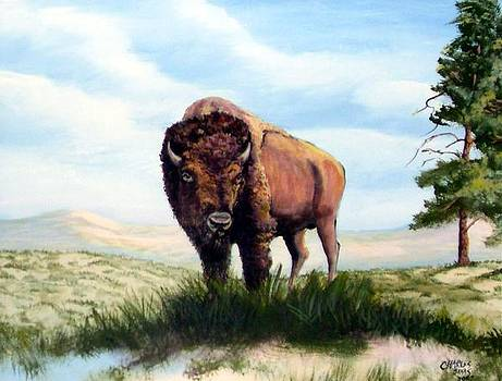 Lone Bull by Charles Sims