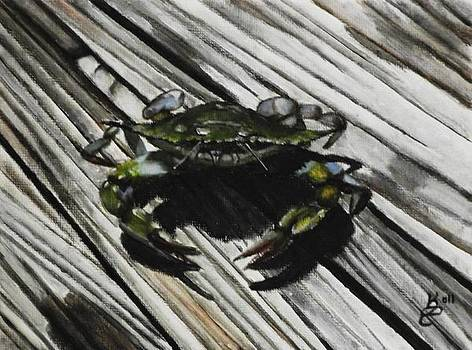 Lonely Crab by Kim Selig