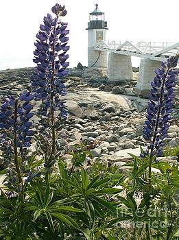 Lupines at Marshall Point Lighthouse by Theresa Willingham