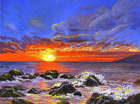 Maui Sunset by Vidyut Singhal