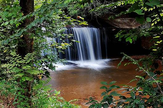 Middlefork Falls by Donnie Smith
