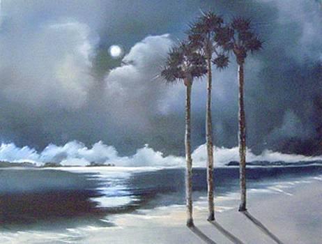 Midnight Beach by Nancy Nuce