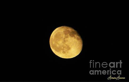 Moon 1 by Lorraine Louwerse