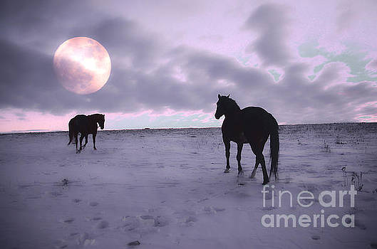 Moon Walk  by Judy Grant