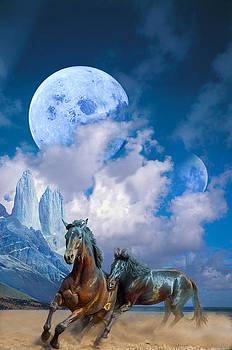 Moonlight Horses by Pavlos Vlachos
