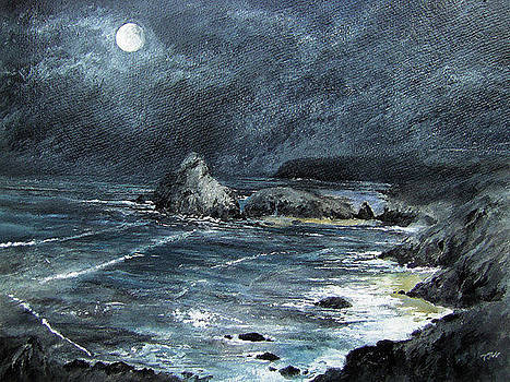 Moonlit Cove by Terry Waites