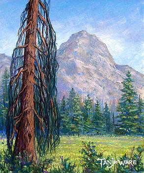 Mount Zierkel by Tanja Ware