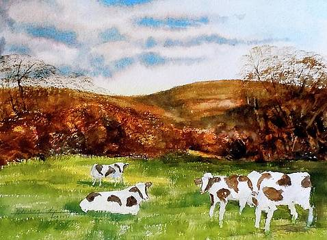 Mountain Meadow by Harding Bush