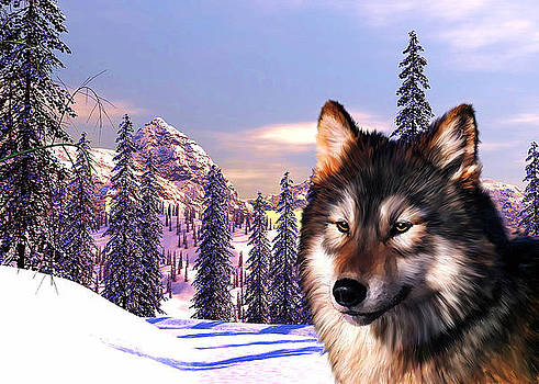 Mountain Wolf Portrait by Michael Greenaway
