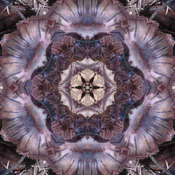Mushroom with Star Center by Trina Stephenson