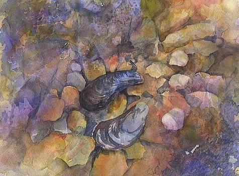 Mussel Yin Yang by Jo-Ann Dziubek-MacDonald