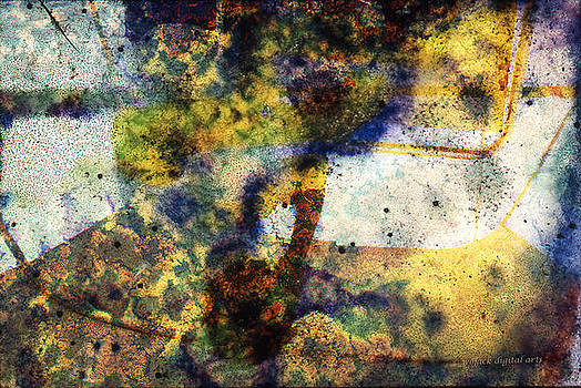 Natural Abstract by Walt Jackson