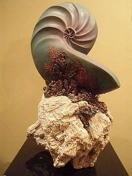 Nautilus by MARI Sanchez