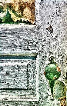 Neighbor's Mysterious Door by Kevyn Bashore