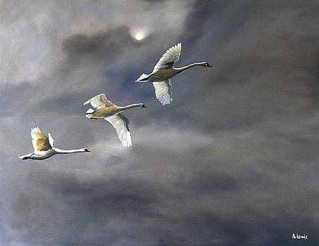 Night Flight by Alan Lewis