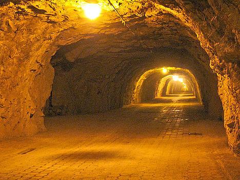 Ogarrio tunnel by Jesus Nicolas Castanon