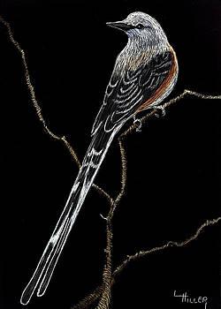 Oklahoma State Bird by Linda Hiller