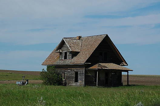 Old Homestead by Wanda Jesfield