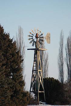 Old Windmill by Wanda Jesfield