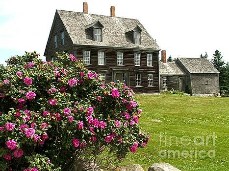 Olson House with Flowers by Theresa Willingham