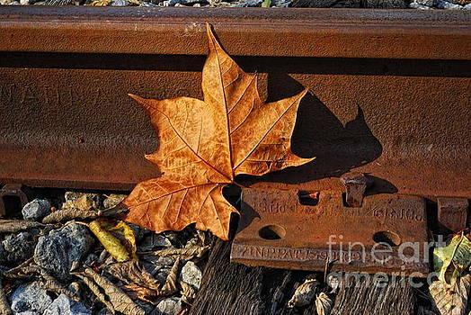 On The Rail by Pamela Baker