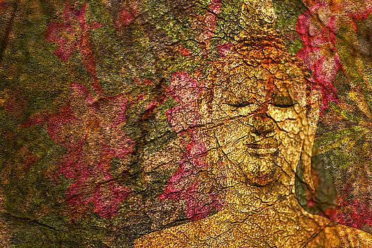 Orchid Buddha by Rob Tullis
