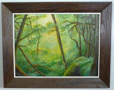 Oregon Rain Forrest by Lila Strong