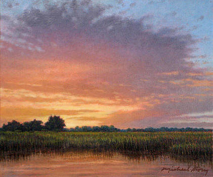ORIGINAL Floodplain at Sunset by Michael Story