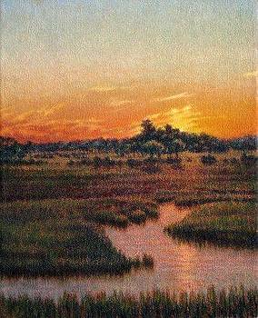 ORIGINAL Lowcountry Luster by Michael Story