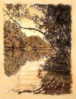 ORIGINAL Reflecting Limb Saluda River by Michael Story