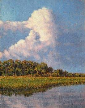 ORIGINAL Rising Above Edisto Island by Michael Story