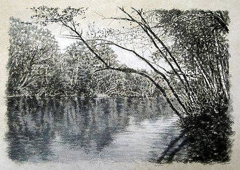 ORIGINAL Saluda River Hideaway by Michael Story