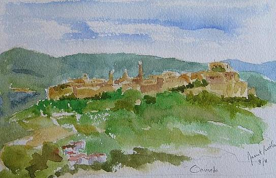 Orvieto in Umbria by Janet Butler