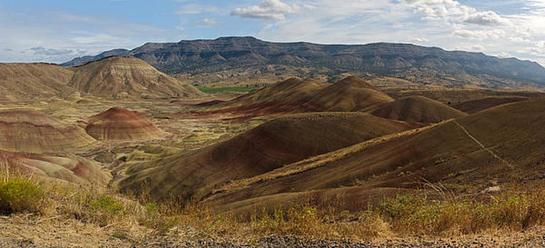 Painted Hills Viewpoint by Richard Ferguson