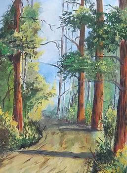 Path by Ashwini Tatkar
