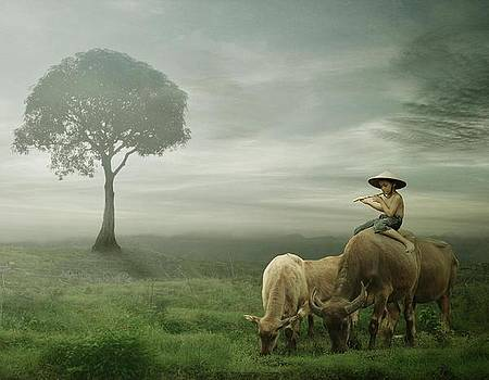 Peaceful Land by Budi Cc-line