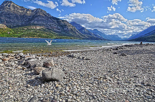 Peaceful Shoreline  by Judy Grant