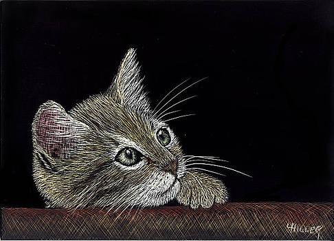 Pensive Kitten by Linda Hiller