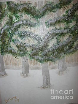 Pines in Snow by Dawn Harrold