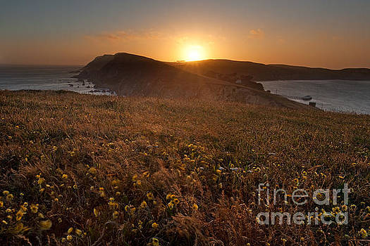 Point Reyes on a Summer Evening by Matt Tilghman