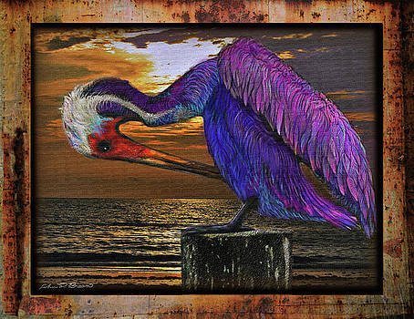 Ponce inlet pelican by John Breen