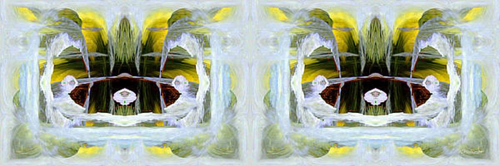 Pond In Fairyland by Joe Halinar