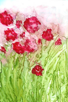 Poppies by Rosie Brown