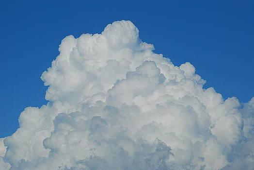 Power of the Storm by Wanda Jesfield