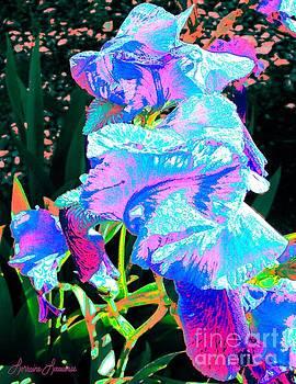 Psychedelic Iris by Lorraine Louwerse