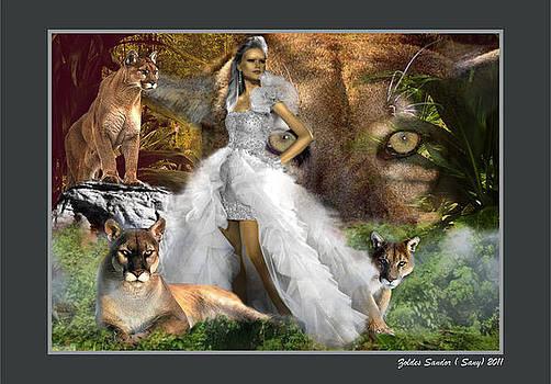 Puma by Zoldes Hampel Sandor